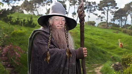 Willie Nelson Wants to Celebrate 80th Birthday Starring in 'The Hobbit: On the Road Again'