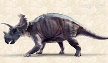 7600萬年前恐龍畸形腿骨化石檢驗 研究員揭祕:罹患骨癌