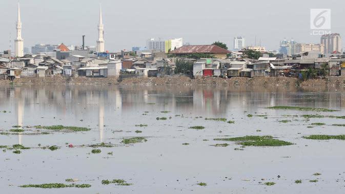 Suasana Waduk Pluit yang banyak tumbuh enceng gondok, Jakarta, Senin (17/12). Kurangnya perhatian serta perawatan menyebabkan tanaman yang berpotensi menjadi hama tersebut kembali tumbuh dan berkembang di Waduk Pluit. (Liputan6.com/Immanuel Antonius)