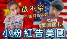影/小粉紅怒美擋簽集體喊告 網紅批:精神分裂