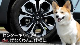 毛小孩也是我們本田!這些套件Honda愛狗人士必須擁有