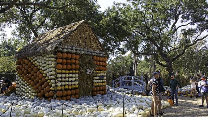 Orang-orang berfoto di depan rumah labu di Desa Labu Dallas Arboretum, Texas, Amerika Serikat, 4 Oktober 2020. Desa Labu di Dallas Arboretum yang mendapat pengakuan nasional menghadirkan rumah-rumah labu dan berbagai objek kreatif dari 90.000 lebih labu, kundur, dan squash. (Xinhua/Dan Tian)