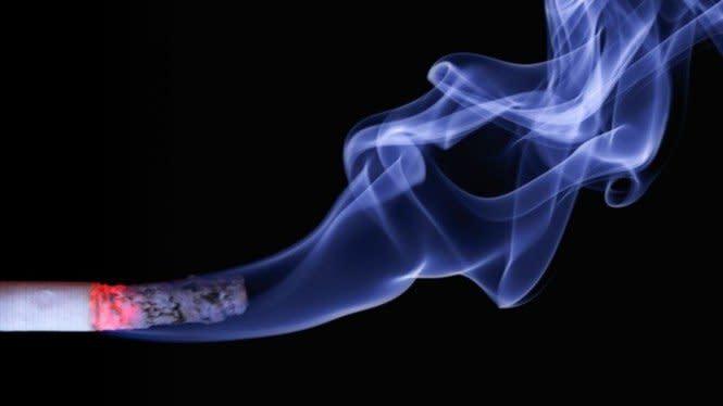 Cara Bersihkan Paru-paru Perokok hingga Rahasia Ranjang Bintang Porno