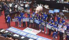 蘇揆赴立院報告 藍委扛「台灣豬」抗議