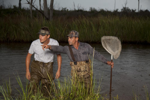 "In this photo provided by the History Channel, a scene from the television show ""Swamp People"" shown on the History Channel. Since the introduction of the History Channel series ""Swamp People"" in 2010, roughly a dozen other Louisiana-based reality shows have made their television debuts, among them the Travel Channel's ""Girls, Guns and Gators,"" CMT's ""Crawfish Cowboys"" and the Discovery Channel's ""Ragin' Cajuns."" While some shows are far-fetched, partially scripted or have very little to do with Louisiana culture, Louisiana Lt. Gov. Jay Dardenne says some are positives for the state's image, capturing aspects of Louisiana's rich and unique lifestyle that can't be found anywhere else. Also drawing production companies to Louisiana is the state's generous TV and film tax credit program. (AP Photo/Swamp People-History Channel, Troy Landry)"