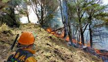 玉山林火撲滅 林務局將求償肇事者