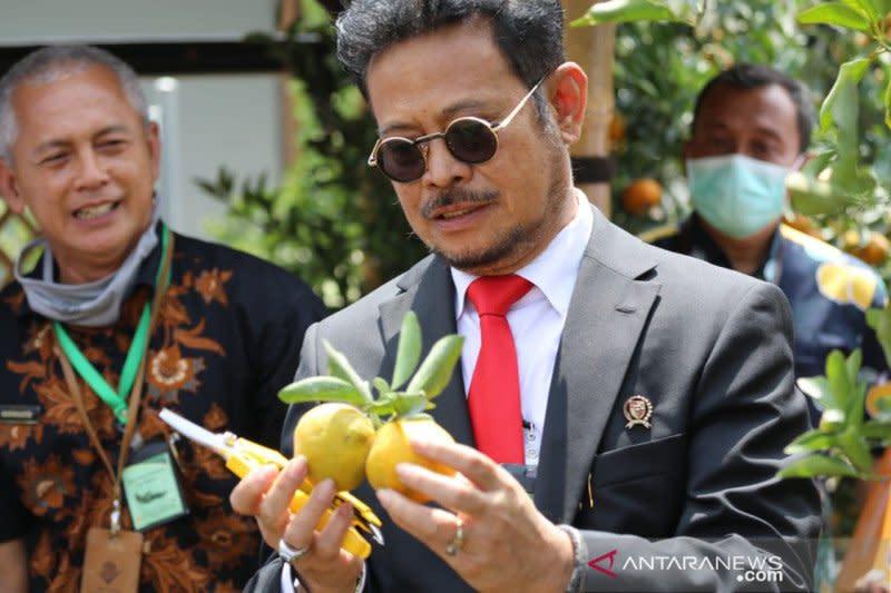 Mentan luncurkan Taman Sains Pertanian Jeruk