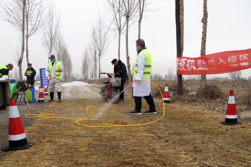 Penyakit yang tewaskan jutaan babi China timbulkan ancaman global