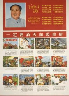 Poster showing Mao and workers trying to eradicate schistosomiasis