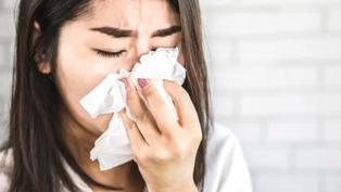 透明鼻水流不停?  醫曝「4面相」小心是過敏性鼻炎
