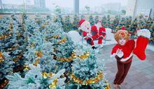 聖誕節就要來這 華泰名品城浪漫開村