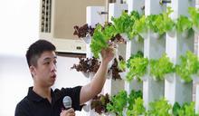 逢甲大學首創電漿氣霧裝置 無土栽培生長速度比傳統氣霧快2.39倍