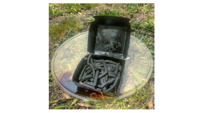 Momen apes pakai microwave (Sumber: Boredpanda)