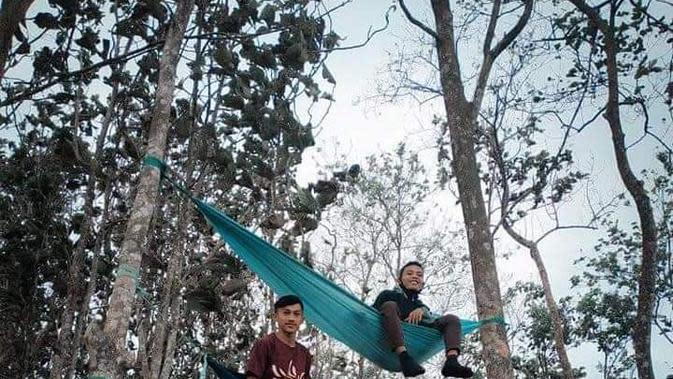 Bagi Anda yang gemar membuka tenda dan menggantungkan hammock sambil menikmati keindahan alam pagi, Puncak Malahu di Kabuoaten Gorontalo menjadi pilihan destinasi wisata yang tepat. (Liputan6.com/ Arfandi Ibrahim)