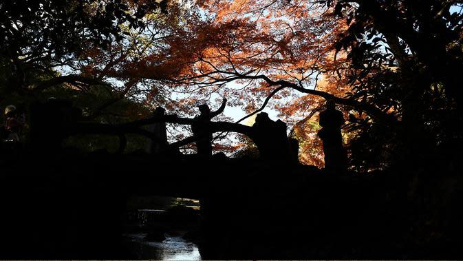 Orang-orang berjalan di bawah dedaunan musim gugur ketika mereka menikmati cuaca di Gyoen Park di Tokyo (5/12/2019). Gyoen Park berada di jalur Tokyo Metro Fukutoshin dekat stasiun Shinjuku-sanchōme. (AFP/Charly Triballeau)