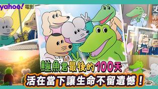【鱷魚君最後的100天】|| 死亡沒有預告 你會後悔自己沒有盡力好好活過嗎?
