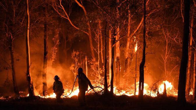 Kebakaran hutan di Australia. (Liputan6/BBC)