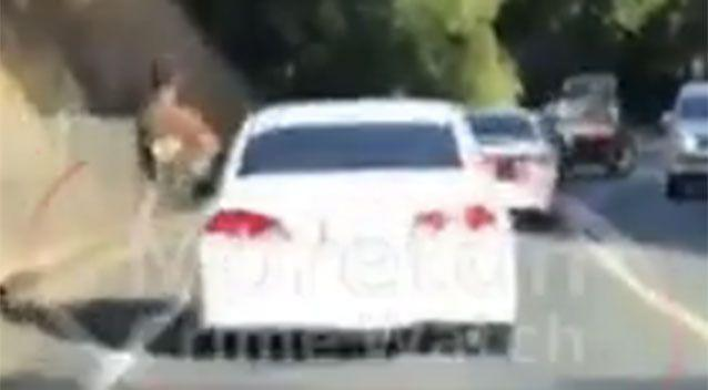 Queensland car passengers hanging out of windows in 'very