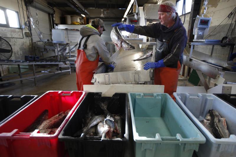 Virus Outbreak Fishing Slowdown
