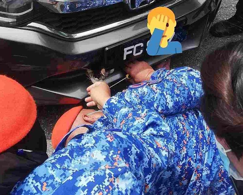 Police and civil defence members help free the cat from its precarious position. — Picture from Twitter/@ahmdfaiz12