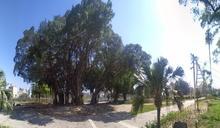 台南生態公園春節好行春 大涼、長興公園是首選