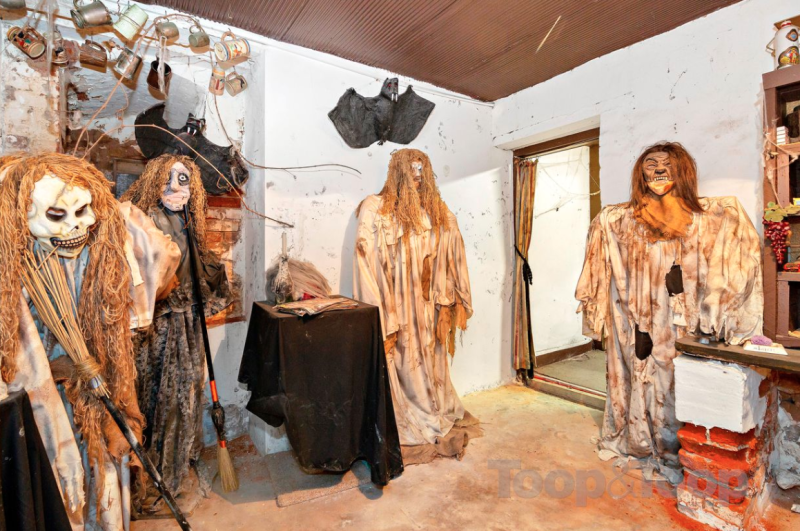 The property's listing includes a jump scare in the basement that will give the faint hearted reason to run. Photo: Troop and Troop