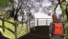 大坑風動石公園整修 明年華麗變身