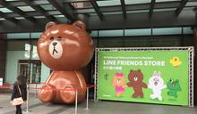 LINE中港店開幕 4米熊大迎賓 (圖)