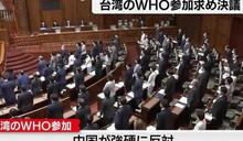 日參院挺台參與WHA!「全體起立」畫面曝光 謝長廷:歷史上第一次