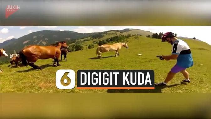 VIDEO: Gara-Gara Sok Akrab, Pria Ini Digigit Kuda Liar