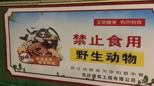 新冠疫情:中國取締野生動物交易與扶貧的矛盾