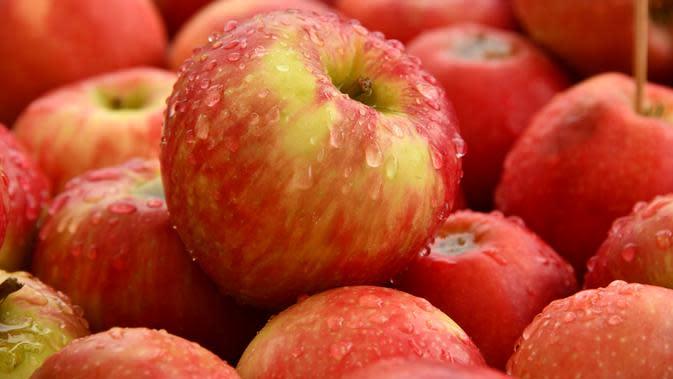 ilustrasi buah apel/Photo by Shelley Pauls on Unsplash