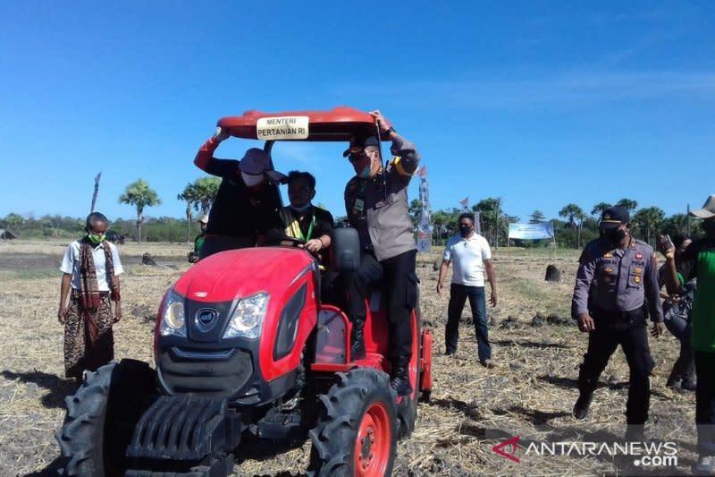Kementan dukung pengembangan 10.000 hektare jagung di NTT