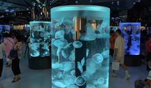Xpark水族館進駐桃園青埔(2) (圖)