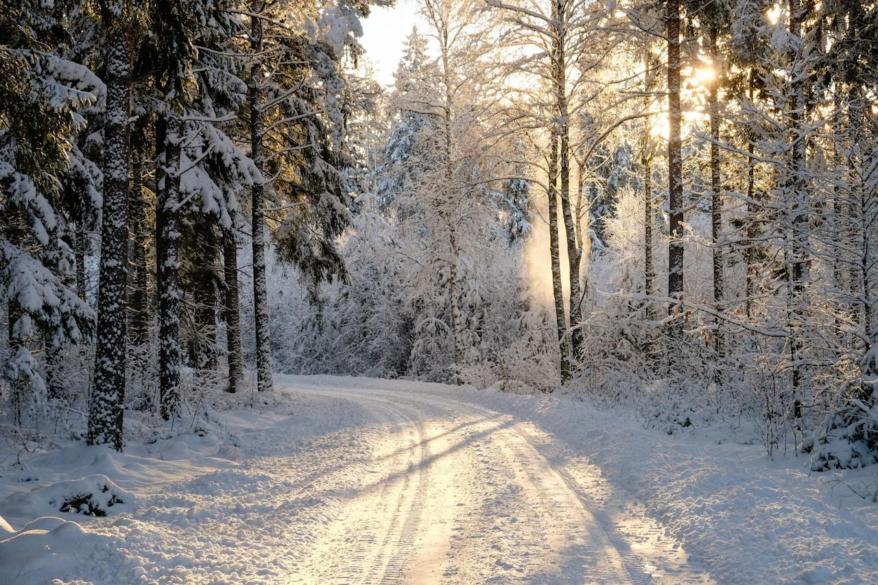 "<p>They don't call it ""the most wonderful time of the year"" for nothing! Here, we're sharing the all-time best winter quotes with you in the hopes that you'll be able to relish in the beauty and tranquility of the season. Whether you're looking for some inspiration for a thoughtful <a href=""https://www.countryliving.com/life/a24788448/christmas-instagram-captions/"">Christmas Instagram caption</a>, <a href=""https://www.countryliving.com/life/entertainment/a30174282/winter-instagram-captions/"">winter Instagram caption</a>, on the hunt for an original <a href=""https://www.countryliving.com/diy-crafts/how-to/g3872/christmas-card-ideas/"">Christmas card</a> message, or simply want to share one of these inspiring sayings with friends and family on your upcoming Polar Express train ride, there's bound to be something here that speaks to you. </p><p>Of course, you don't need a reason to appreciate the season. Showing our gratitude for Mother Nature is something we should do every day, regardless of the circumstances or time of year. Fr0m the profound winter quotes (""To appreciate the beauty of a snowflake, it is necessary to stand out in the cold,"" says Aristotle) to the funny winter quotes (take, for instance, ""A snowball in the face is surely the perfect beginning to a lasting friendship"" from <em>The Book Thief</em>) and a few classic holiday-inspired ones to read out loud at Christmas dinner, we've got a quote or winter saying for just about everyone. Should you need a little extra inspiration though, you might want to check out our very favorite <a href=""https://www.countryliving.com/life/g2819/christmas-quotes/"">Christmas quotes</a>!</p>"