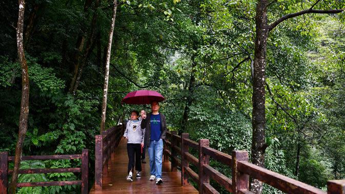Wisatawan berjalan-jalan di hutan yang berada di kawasan wisata di Kota Zunyi, Provinsi Guizhou, China (7/10/2020). Terkenal karena kekayaan sejarah dan sumber daya alamnya, Kota Zunyi menarik banyak wisatawan selama libur Hari Nasional dan Festival Pertengahan Musim Gugur. (Xinhua/Yang Wenbin)