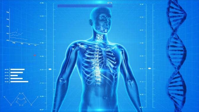 Ilustrasi tubuh manusia. (Sumber Pixabay/ranah publik via Creative Commons)