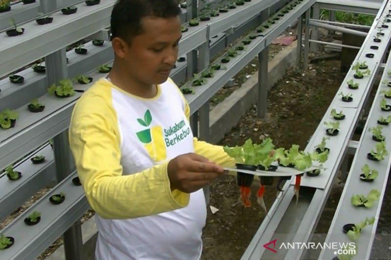 Pemkot Sukabumi optimalkan produksi pangan lokal