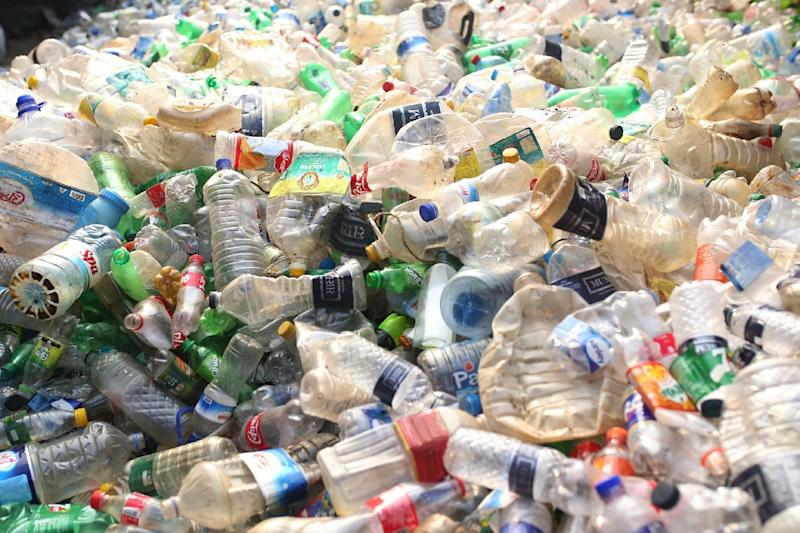 One answer to the plastic waste problem? Hungry, hungry enzymes