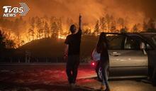 燒不完!加州酒鄉冒野火 葡萄園慘變灰燼