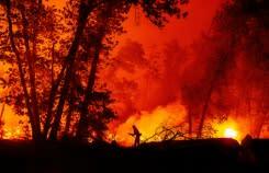 Kebakaran California mencapai rekor tertinggi seluas dua juta acre