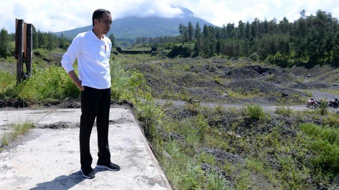 Jokowi: Semua Waduk yang Sedimennya Tinggi Diselesaikan dengan Penanaman Vetiver