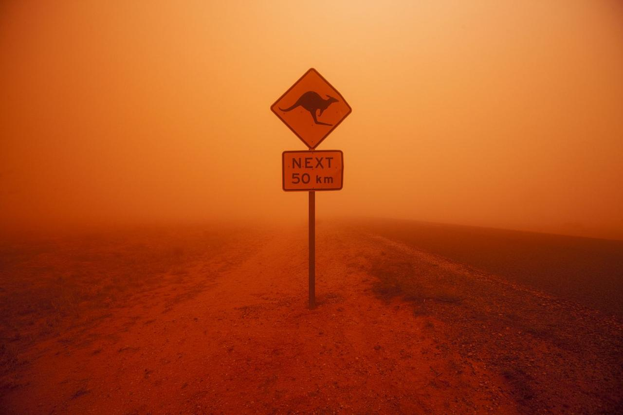 <p>A lone kangaroo crossing sign stands amid a dust storm, which fills the air with an orange hue.</p>