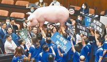 挺萊豬綠委被發動罷免 年輕支持者驚吐一句話