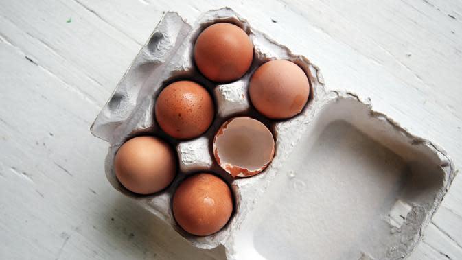 ilustrasi telur/Photo by Caroline Attwood on Unsplash