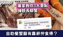 【食物安全】自助餐蟹腳有蟲卵仲食得?專家教你3大要點揀靚長腳蟹