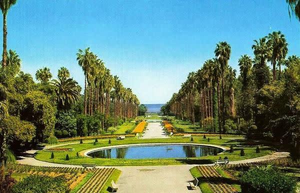 حديقة الحامة بالجزائر ESSAI4.jpg
