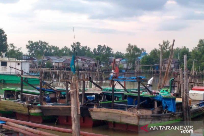 Nelayan udang belalang alihkan pencarian karena Covid-19