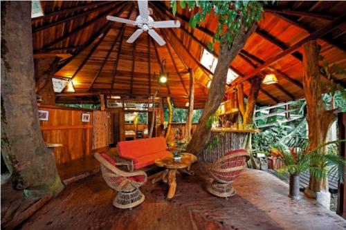 Best treetop hotels