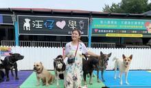Pinky過世想再領養毛孩 Selina到狗園探訪2300隻狗